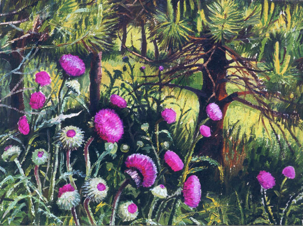 THISTLE. 1999, oil on canvas, 40x50 cm